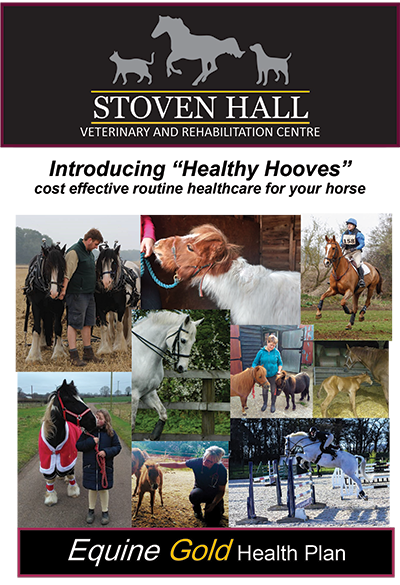 Stoven Hall Equine Health Plan